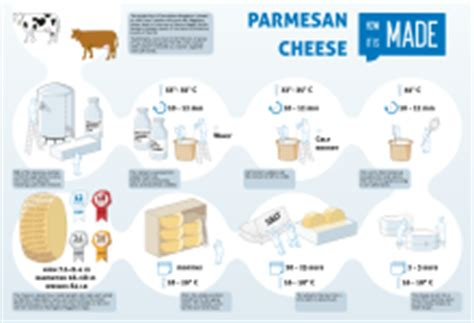 successful cheesemakingã step by step directions photos for nearly every type of cheese books parmigiano reggiano