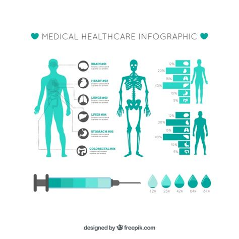 infographics human body medical infographic template vector free download