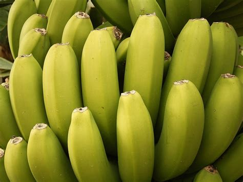 bananas hd wallpaper banana wallpapers hd wallpaper fruits wallpapers