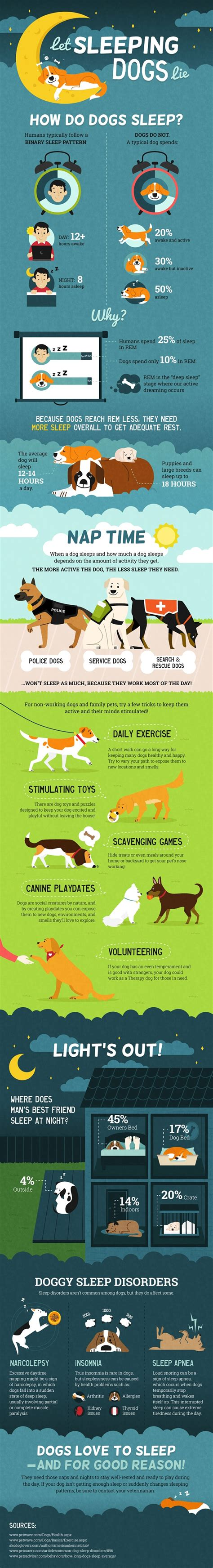 how much sleep do dogs need let sleeping dogs lie but how much sleep do dogs need daily tagdaily tag