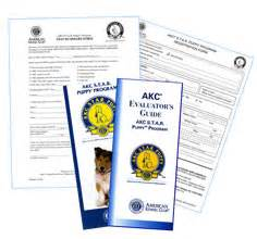 akc puppy test american kennel club store shop for related products for your breed or