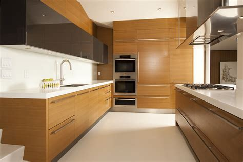 Miele Kitchen Cabinets Miele Refrigerator Kitchen Modern With Cabinet Front Refrigerator Ceiling Lighting Cooktop