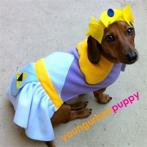 nintendo dogs princess from nintendo costume