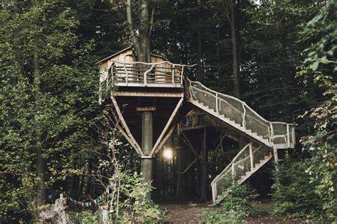 tree house hotels outdoor aesthetics tree house hotel robin s nest