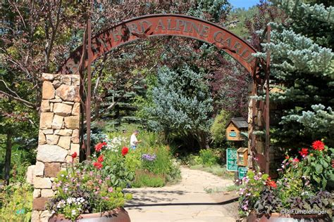 Betty Ford Alpine Gardens by A Stroll Through The Betty Ford Alpine Gardens Vail