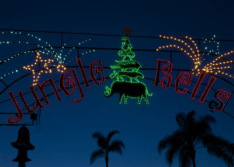 San Diego Holiday Attractions Offer Festive Fun This Winter Zoo Lights San Diego