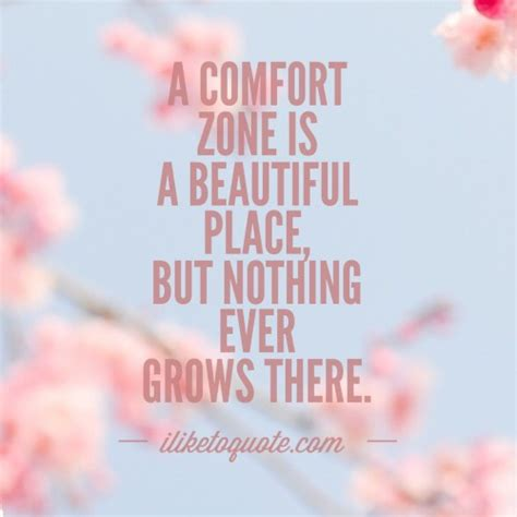 what is comfort zone mean a comfort zone is a beautiful place but nothing ever