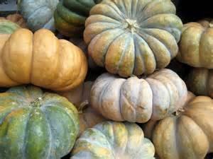 liddy cakes pumpkin patch