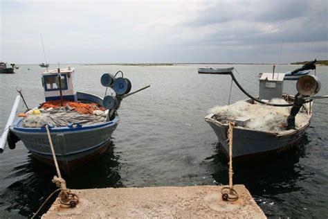 fico d india porto selvaggio c 244 te tyrrh 233 nienne du salento s al bagno porto