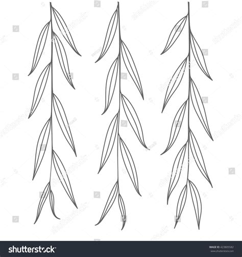 twig template weeping willow branch tree twig outline leaves isolated