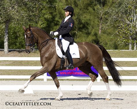 Cdi Grand Binaparts canadians win top honours at the wellington dressage cdi w