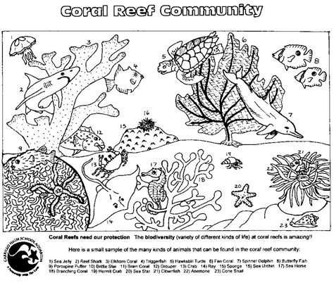 free coloring pages of animal food chain