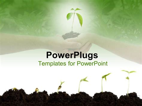 plants themes for powerpoint 2007 free download powerpoint template stages of growth of plant on shades