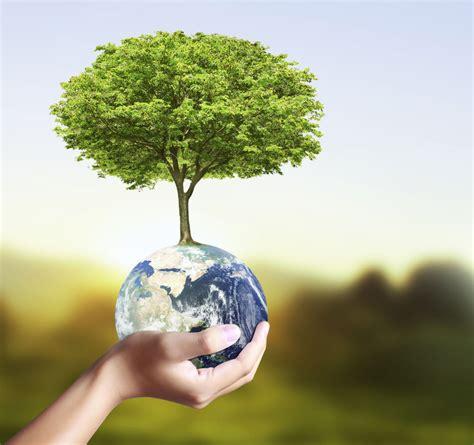 5 obligations 224 respecter pour l environnement pleinevie fr