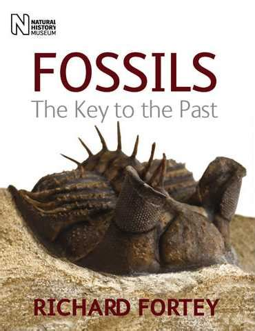 she found fossils books the rock gallery about fossils