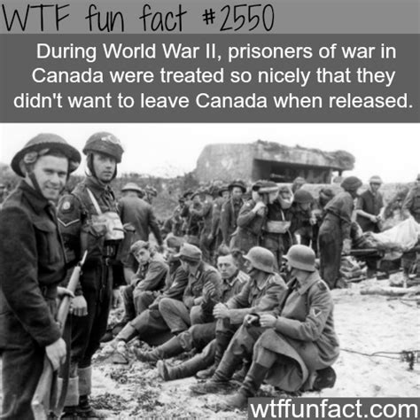 the war trivia book fascinating facts and interesting war stories trivia war books volume 2 books world war 2 canada s prisoners facts