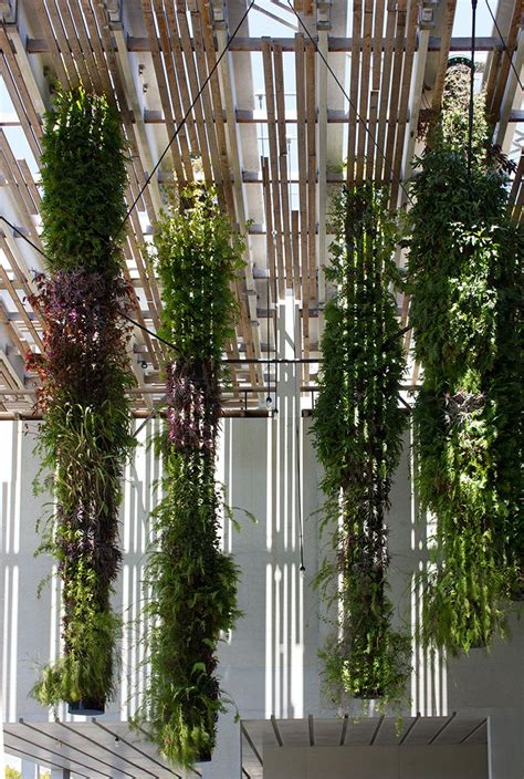 Vertical Gardens Miami 145 Best Images About Landscape Architecture On