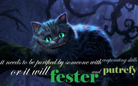 a cat in 2010 cheshire cat in quotes quotesgram