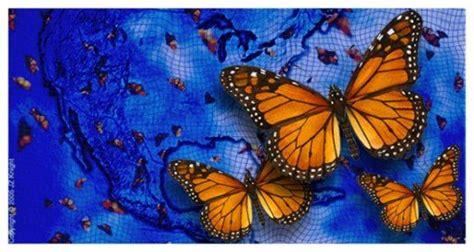 imagenes de mariposas espirituales abre la mente cerrada mensaje de ramtha