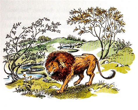 libro the lion and the aslan the chronicles of narnia wiki fandom powered by wikia