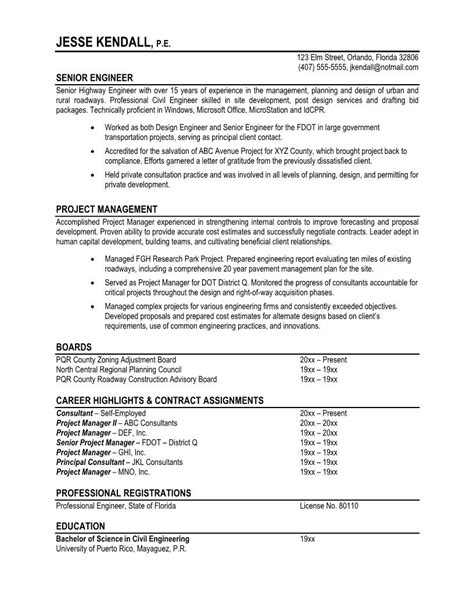 professional resume format perfect professional resume
