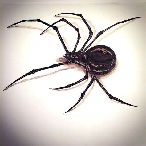 3d black spider tattoo design