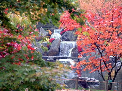 imagenes de zen japones jard 237 n japones blogdepelusita