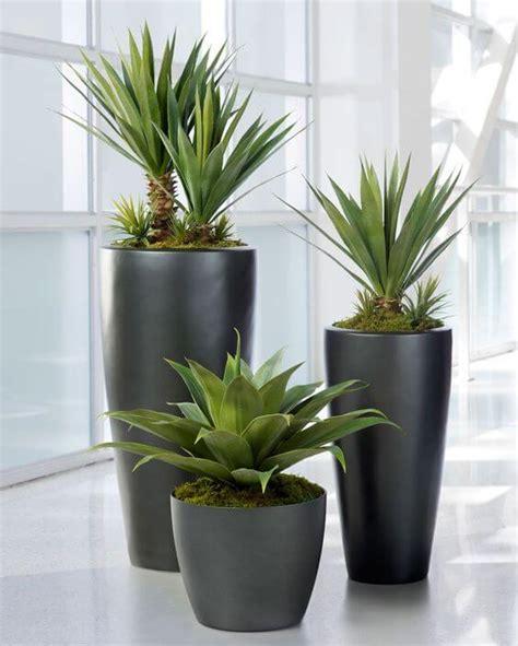 reasons   tech geek    indoor plant