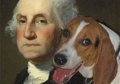 george s dogs george washington loved dogs so much he wrote to a general about a mid