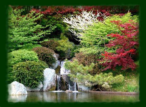 imagenes de la vida natural hemery vida natural iridologia y flores de bach