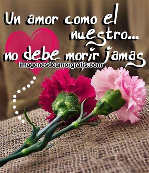 imagenes de amor con flores tumblr im 225 genes de amor con flores y frases