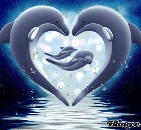 imagenes de amor animadas de delfines delfines picture 128149265 blingee com