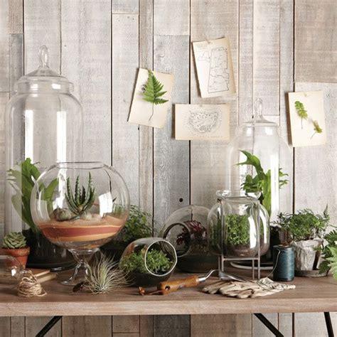 indoor plant options for apartments cozy bliss 5 decorative terrarium ideas cozy bliss
