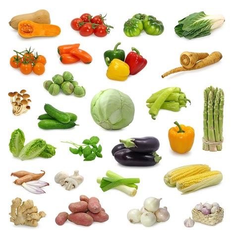 What Vegetable Is This by Anti Cellulite Diet Easy Diet Secretly Healthy