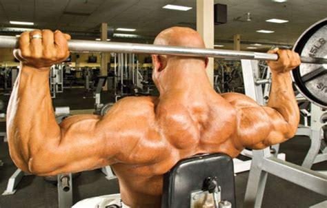 neck shoulder press bodybuilding wizard