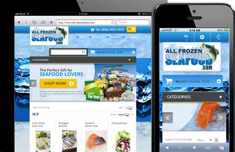 magento ecommerce development by fort lauderdale web