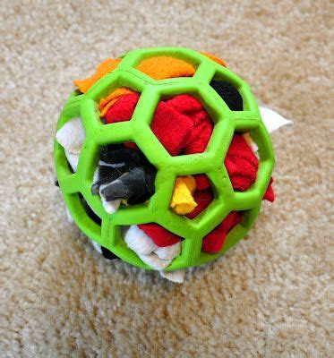 brain toys for dogs best 25 enrichment ideas on diy enrichment toys for dogs diy