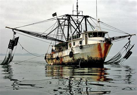 fishing boat companies in south korea south koreans push back on accusation that the korean iuu