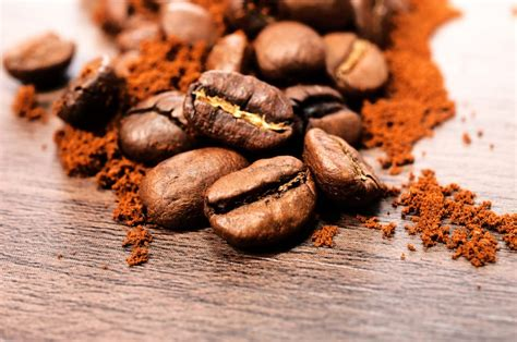 combine the best coffee beans with the best coffee mugs online the best coffee beans in the world regev elya