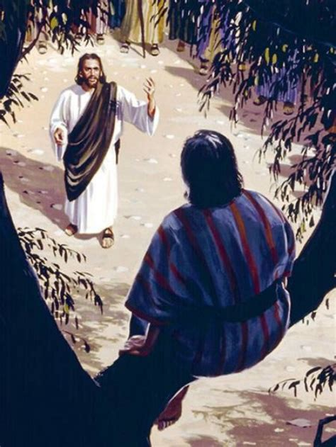 imagenes de jesus y zaqueo im 225 genes de jes 250 s y zaqueo imagenes de jesus fotos de