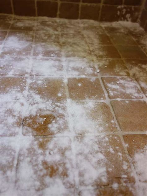 Black Mold In Shower Grout by Cleaning Grout Baking Soda