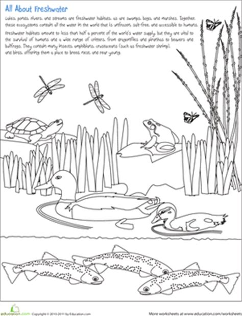 fish habitat coloring pages color the freshwater habitat worksheet education com