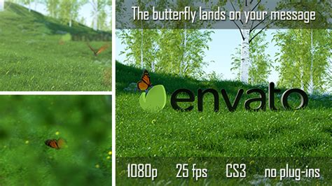 Download Videohive After Effects Project Files Butterfly Logo Reveal Torrent 1337x Videohive Templates Kickass