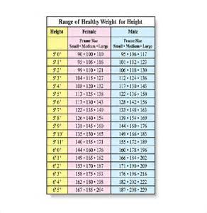doc 728592 army height and weight chart the army