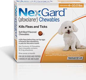 flea and tick pill the new tasty chew that effectively combats fleas ticks