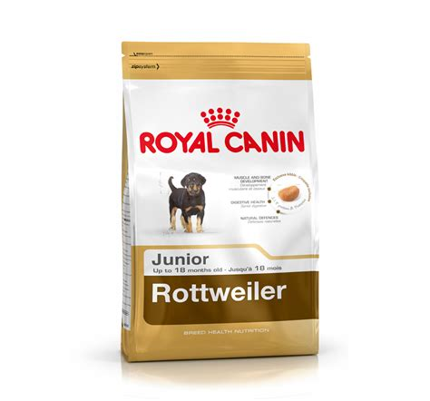 royal canin rottweiler royal canin rottweiler junior 12 kg dogspot pet supply store