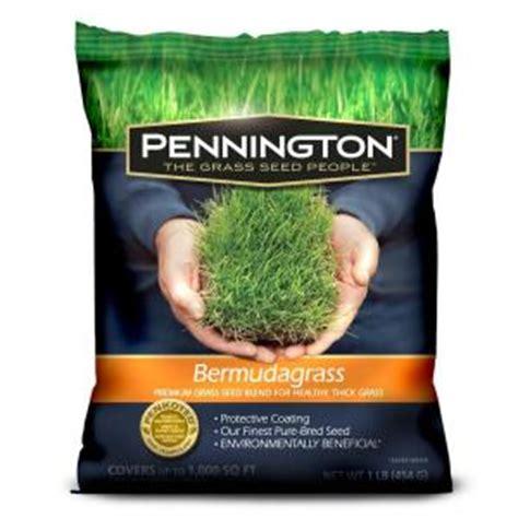 pennington 1 lb bermudagrass grass seed blend 100086856