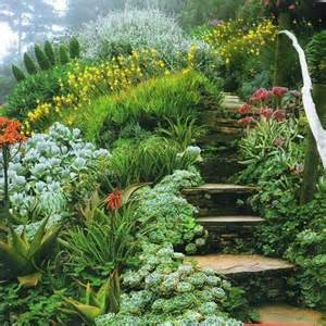 Gardening On A Hill Gardens Plants And Drought Tolerant Plants On