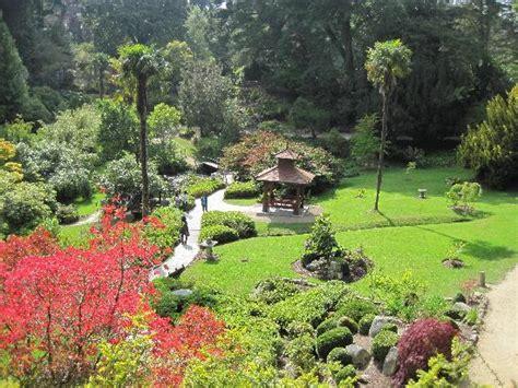 immagini giardini giapponesi giardini giapponesi al powerscourt estate foto di