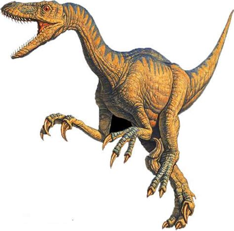 what does velociraptor eat it velociraptor upper cretaceous eat you if you don t run